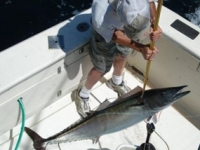 Carolina Beach Fishing Charters Photo Gallery (27)